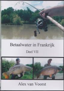 dvd VII